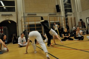 capoeira-meeting-copenhagen-2010-0370